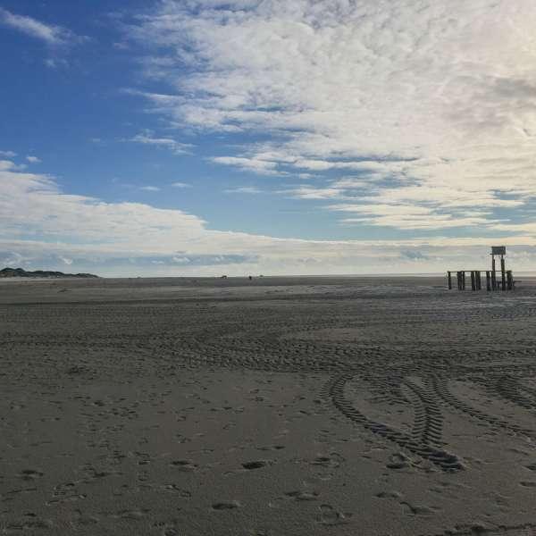 Stranden og klitterne på Amrum