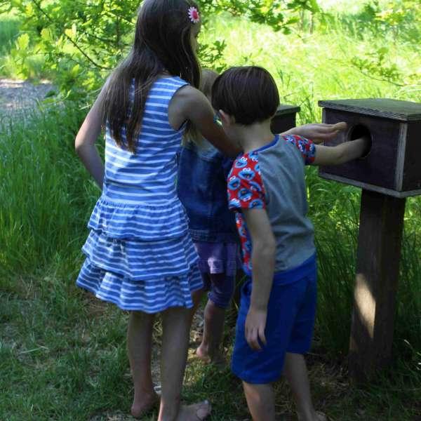 Børn stikker hænderne i en følekasse i Barfusspark Schwackendorf