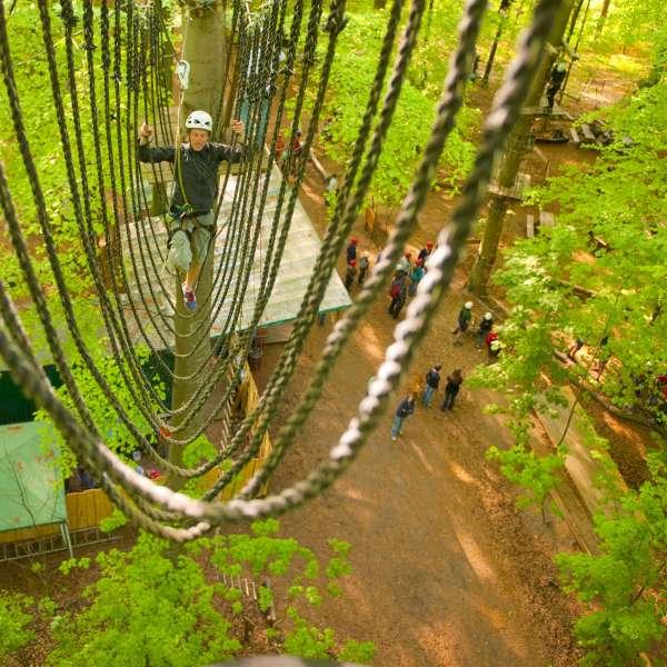Burmabroen under trætoppene i Hochseilgarten Altenhof