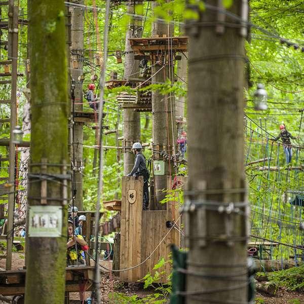 Overblik over de mange klatreopgaver i Hochseilgarten Altenhof
