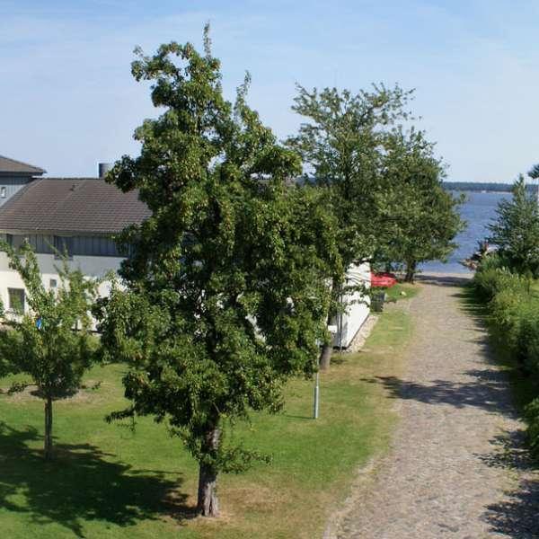 Panoramaoptagelse af vandrehjemmet i Borgvedel ved Slesvig med stranden og fjorden Slien i baggrunden