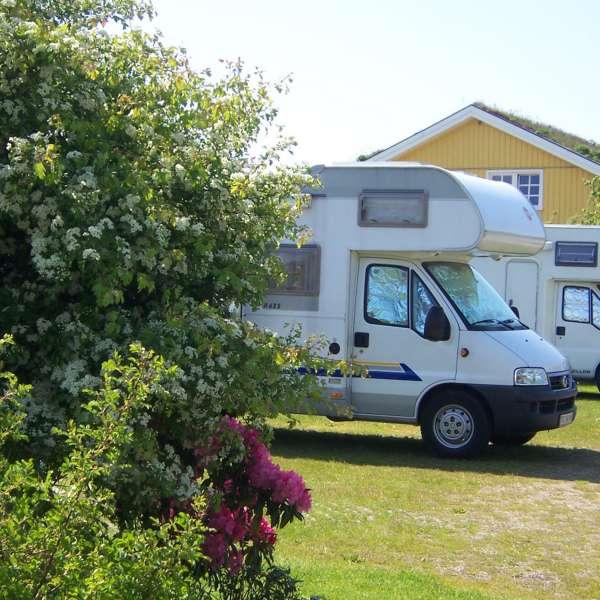 To autocampere på campingpladsen meerGrün Campingpark Olsdorf i Sankt Peter-Ording