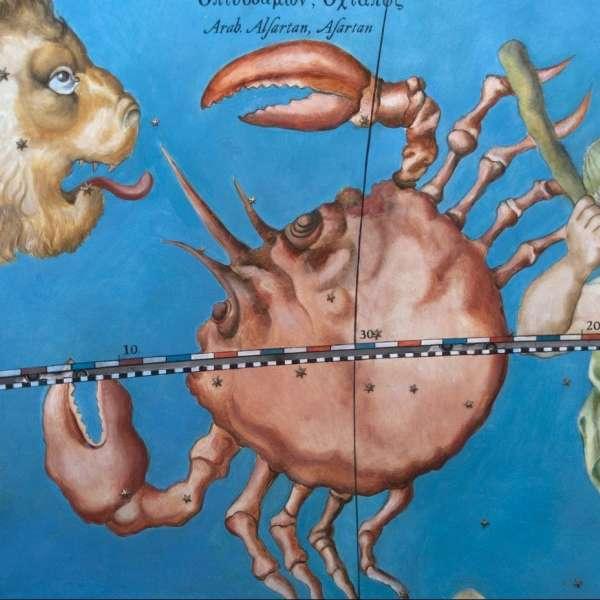 Kunstnerisk fremstilling af stjernebilledet krebsen på det gottorpske Kæmpeglobus på Gottorp Slot i Slesvig