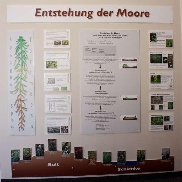 Udstilling om hvordan moserne opstod på Naturzentrum Mittleres Nordfriesland i Bredsted