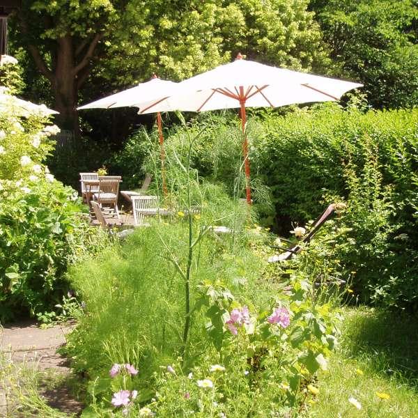 Haven på Café Kranz i Nisvrå ved Gelting